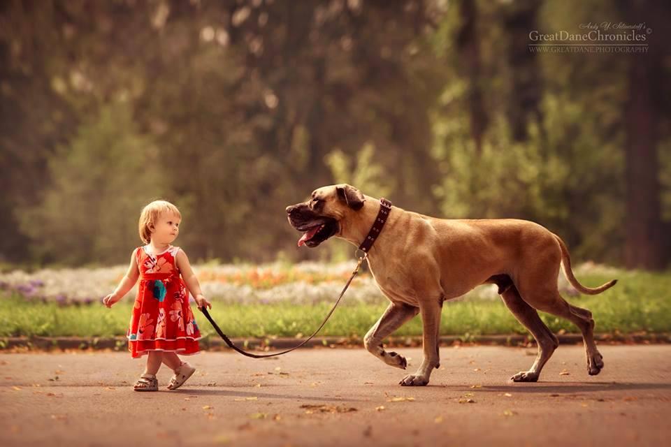 Les enfants qui vivent avec un chien font moins de colère